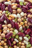 Assortment of different types of beans - red beans, chickpeas, p Stock Photos