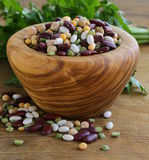 Assortment of different types of beans Stock Image