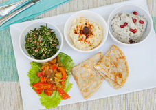 Assortment of dips: hummus, chickpea dip, tabbouleh salad, baba ganoush and flat bread, pita Royalty Free Stock Photography