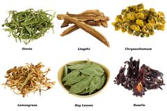 Assortment of Dried Herbal Tea Royalty Free Stock Image