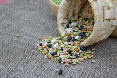 An assortment of dried legumes and cereals Stock Photography