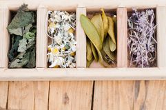 Assortment of dry medicinal herbs Royalty Free Stock Photo