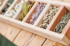 Assortment of dry medicinal herbs. In wooden box Royalty Free Stock Images