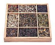 Assortment of dry tea Stock Images