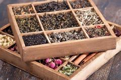 Assortment of dry tea Stock Photography