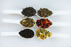 Assortment of dry tea. Various kinds of tea isolated on white.Different kinds of tea leaves. Tea composition with different kind o Royalty Free Stock Photography