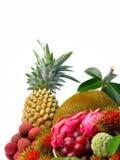 Assortment of exotic fruits isolated on white background Stock Image