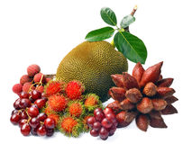 Assortment of exotic fruits isolated on white background Stock Photography