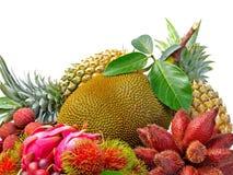 Assortment of exotic fruits isolated on white background Stock Photos
