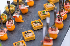 Assortment festive appetizers. With tapas Stock Images