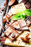 Assortment of fine chocolates and pralines with fresh mint and v Stock Photos