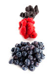 Assortment of forest fruits, rasperries, blueberries and blackbe. Rries Stock Image
