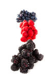 Assortment of forest fruits, rasperries, blueberries and blackbe. Rries Royalty Free Stock Photography