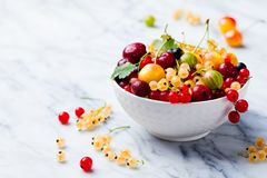 Assortment of fresh berries in white bowl. Marble background. Copy space.  Stock Photos