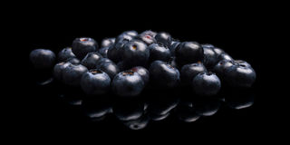 Assortment of fresh blueberries isolated black royalty free stock photos