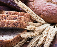 Assortment fresh bread and wheat ears Stock Images