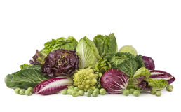 Assortment of fresh cabbages stock photography