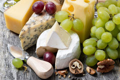 Assortment of fresh cheeses, grapes and walnuts Royalty Free Stock Images