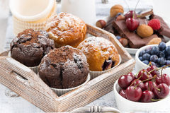 Assortment of fresh delicious muffins and fresh berries Stock Image