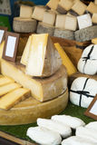 Assortment of fresh different cheese Royalty Free Stock Images