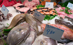 Assortment of fresh fish. On market stall Royalty Free Stock Photos