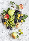 Assortment of fresh fruit - grapes, pears, apples, plums on a light background Royalty Free Stock Photos