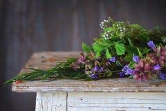 Assortment of fresh herbs Stock Photos