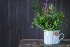 Assortment of fresh herbs. Old cup with assortment of fresh herbs mint, oregano, thym, blooming sage over old wooden background. Natural day light stock photo