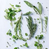 Assortment of fresh herbs Royalty Free Stock Image