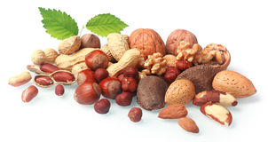 Assortment of fresh nuts Royalty Free Stock Image