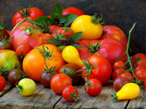Assortment of fresh organic colorful tomatoes on wooden background. Stock Photography