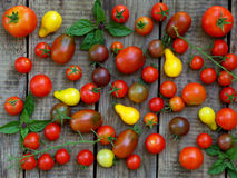 Assortment of fresh organic colorful tomatoes on wooden background. Royalty Free Stock Image