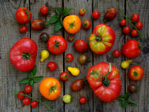 Assortment of fresh organic colorful tomatoes on wooden background. Royalty Free Stock Photo