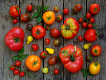 Assortment of fresh organic colorful tomatoes on wooden background. Stock Images