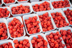 Assortment Of Fresh Organic Red Berries. Raspberries At Produce Local Market In Baskets, Containers Stock Photo