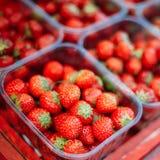 Assortment Of Fresh Organic Red Berries Royalty Free Stock Photo