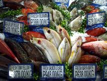 An assortment of fresh raw fish and seafood on sale at a grocery store. ANTIPOLO CITY, PHILIPPINES - JUNE 19, 2017: An assortment of fresh raw fish and seafood Royalty Free Stock Image