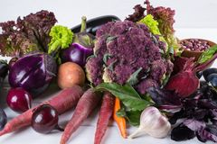 Assortment of fresh raw purple homegrown vegetables on white table. Cauliflower eggplant  beets  carrots  potatoes  plums  basil  onions garlic  beans  lettuce Stock Images