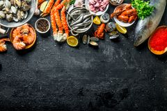 Assortment of fresh seafood. On black rustic background royalty free stock photos
