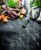 Assortment of fresh seafood. On dark rustic background stock image
