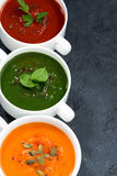 Assortment of fresh vegetable soup on a black background Stock Images
