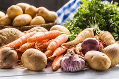 Assortment of fresh vegetables on wooden table. Carrot parsnip garlic celery onion and kohlrabi royalty free stock image