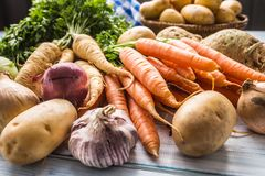 Assortment of fresh vegetables on wooden table. Carrot parsnip garlic celery onion and kohlrabi royalty free stock images