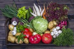 Assortment of fresh vegetables on wooden tray background. Assortment fresh raw vegetables arranged on rustic wooden table tray. Selection includes carrot, potato Royalty Free Stock Images
