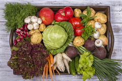 Assortment of fresh vegetables on wooden tray background. Assortment of fresh raw vegetables arranged on a rustic wooden table tray. Selection includes carrot Royalty Free Stock Images
