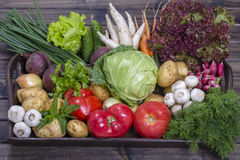 Assortment of fresh vegetables on wooden tray background. Assortment of fresh raw vegetables arranged on a rustic wooden table tray. Selection includes carrot Stock Images