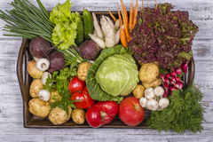 Assortment of fresh vegetables on wooden tray background. Assortment of fresh raw vegetables arranged on a rustic wooden table tray. Selection includes carrot Stock Photos