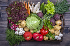 Assortment of fresh vegetables on wooden tray background. Assortment of fresh raw vegetables arranged on a rustic wooden table tray. Selection includes carrot Stock Image