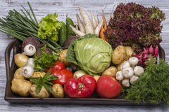 Assortment of fresh vegetables on wooden tray background. Assortment fresh raw vegetables on a rustic wooden table tray. Selection includes carrot, potato Stock Photography