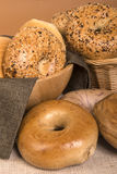 Assortment of freshly baked bagels Stock Photography